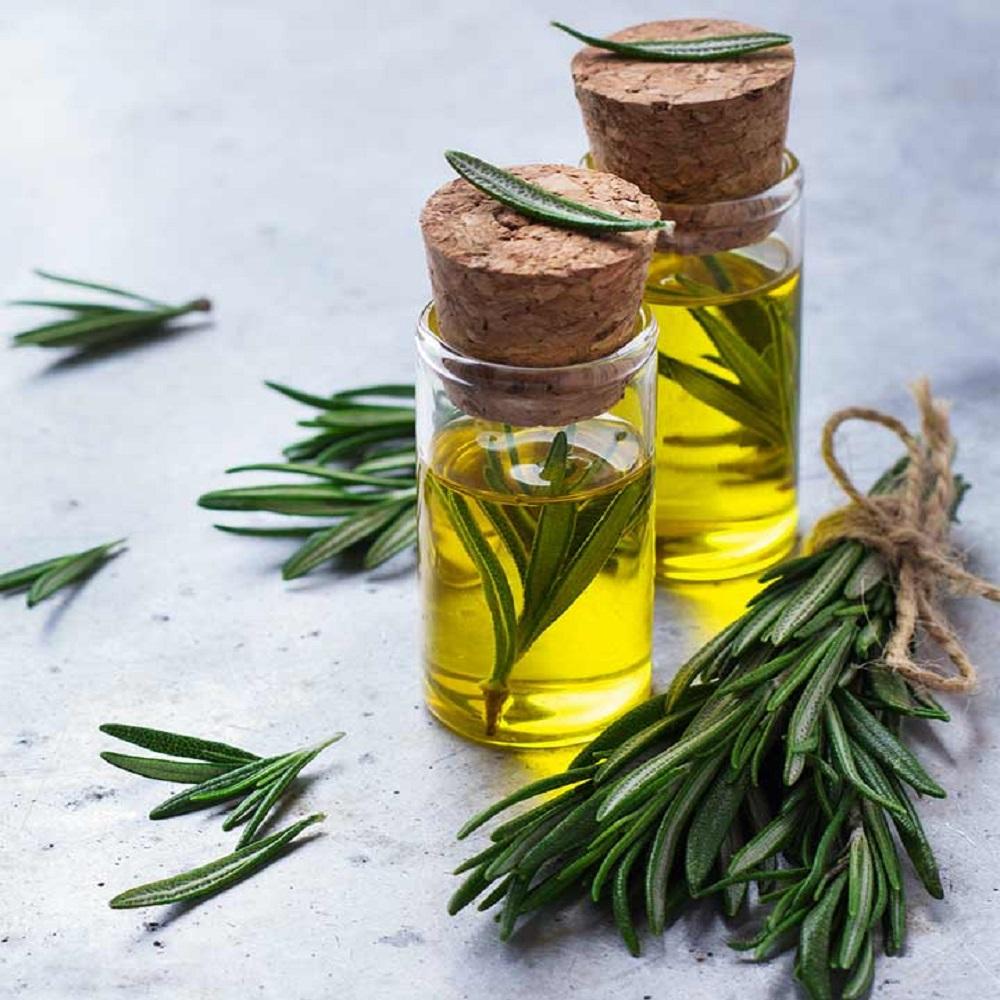 carrier oils for hair